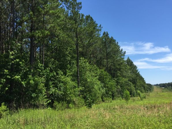 null bed null bath Vacant Land at 000 Beth Herrington Ln Mount Olive, MS, 39111 is for sale at 232k - 1 of 12
