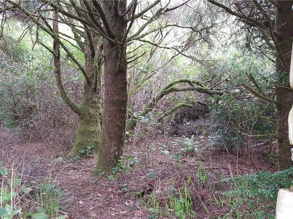 null bed null bath Vacant Land at 139 Lot Copalis Beach, WA, 98535 is for sale at 9k - google static map