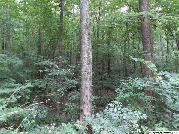 null bed null bath Vacant Land at 00 Hwy 227 Guntersville, AL, 35976 is for sale at 48k - 1 of 3
