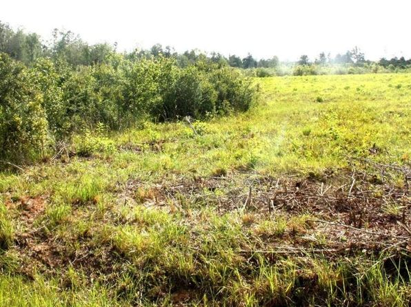 null bed null bath Vacant Land at 00 Lake Rd McHenry, MS, 39561 is for sale at 100k - 1 of 4