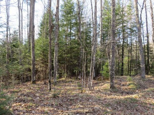 null bed null bath Vacant Land at  Wildcat Rd Presque Isle, WI, 54557 is for sale at 46k - 1 of 10