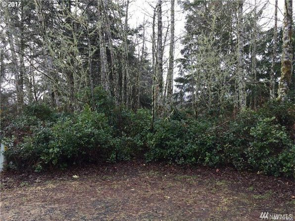 null bed null bath Vacant Land at 224TH St Ocean Park, WA, 98640 is for sale at 9k - google static map