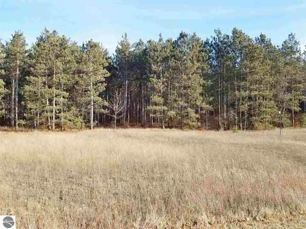 null bed null bath Vacant Land at 31 Acres North Manistee County Line Thompsonville, MI, 49683 is for sale at 66k - 1 of 14