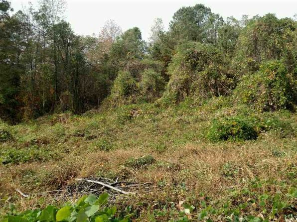 null bed null bath Vacant Land at 189 County Road 314 Sweetwater, TN, 37874 is for sale at 25k - 1 of 2
