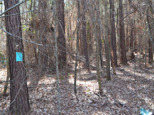 null bed null bath Vacant Land at  Calhoun 85 Fordyce, AR, 71742 is for sale at 180k - 1 of 40