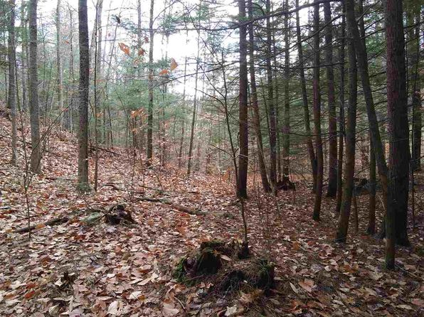 null bed null bath Vacant Land at 0 Old Mountain Turnpike Rd Winchester, NH, 03470 is for sale at 40k - 1 of 2