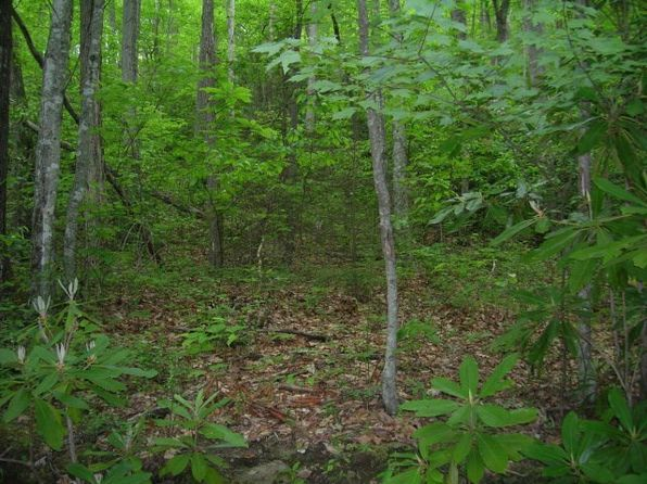 null bed null bath Vacant Land at  Black Rock Crk Qualla, NC, 28719 is for sale at 50k - 1 of 3