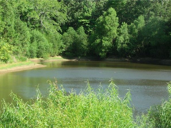 null bed null bath Vacant Land at 00 Pr 52444 Leesburg, TX, 75451 is for sale at 45k - 1 of 18