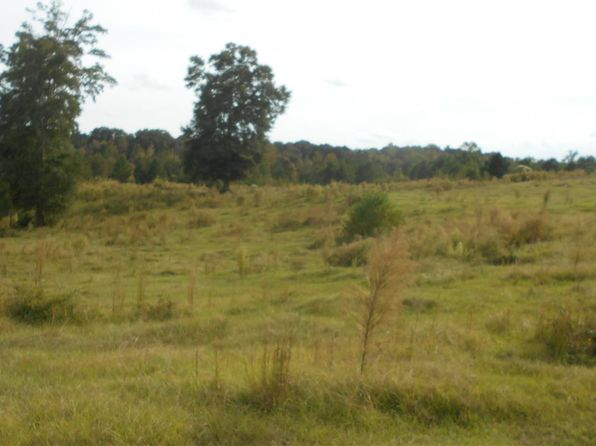null bed null bath Vacant Land at  NORMAN RD HAZLEHURST, MS, 39083 is for sale at 144k - 1 of 47