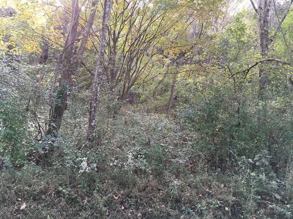 null bed null bath Vacant Land at .40 Ac Lynch Ln Gainesboro, TN, 38562 is for sale at 5k - google static map