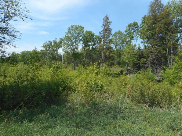 null bed null bath Vacant Land at 8494 Anderson Rd Kaleva, MI, 49645 is for sale at 44k - 1 of 11
