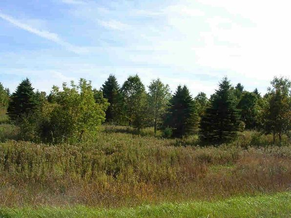 null bed null bath Vacant Land at  Archer Rd Wild Rose, WI, 54984 is for sale at 200k - 1 of 6