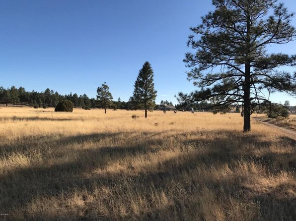 null bed null bath Vacant Land at  Tbd Lodge Rd Aripine, AZ, 85933 is for sale at 100k - 1 of 9