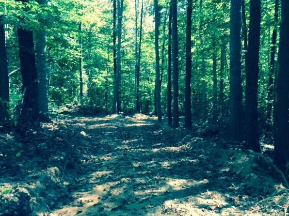 null bed null bath Vacant Land at 13 Ac of 77 Ac Old Dominion Rd Schuyler, VA, 22969 is for sale at 46k - google static map