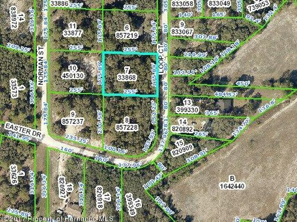 null bed null bath Vacant Land at 00 Loop Ct Webster, FL, 33597 is for sale at 9k - google static map