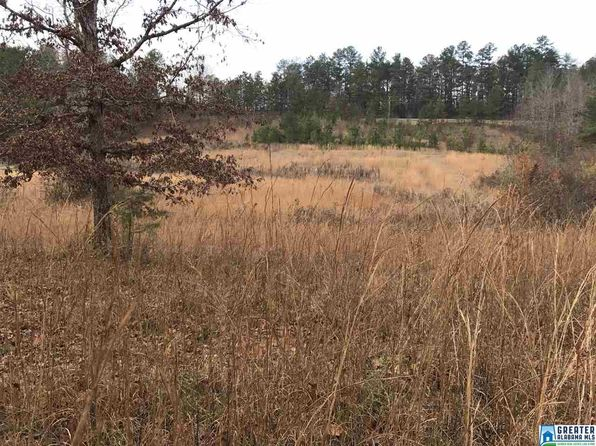 null bed null bath Vacant Land at 38 Hawkins Ln Pell City, AL, 35125 is for sale at 80k - 1 of 32
