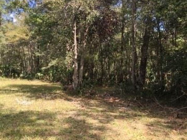 null bed null bath Vacant Land at  Ancient Oaks Steinhatchee, FL, 32359 is for sale at 69k - 1 of 4