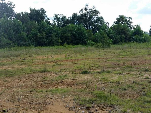 null bed null bath Vacant Land at  Wisteria Ln Fairview, WV, 26570 is for sale at 60k - 1 of 7