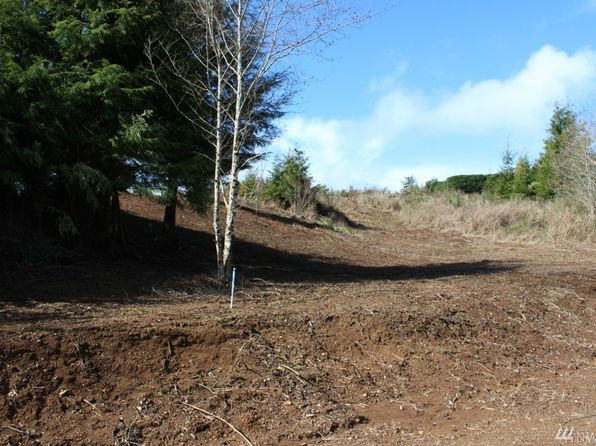 null bed null bath Vacant Land at 16 Bayview Ln Hoquiam, WA, 98550 is for sale at 9k - 1 of 3