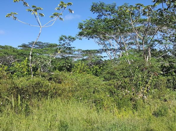 null bed null bath Vacant Land at 23RD Ave Kea'Au, HI, 96749 is for sale at 27k - 1 of 3