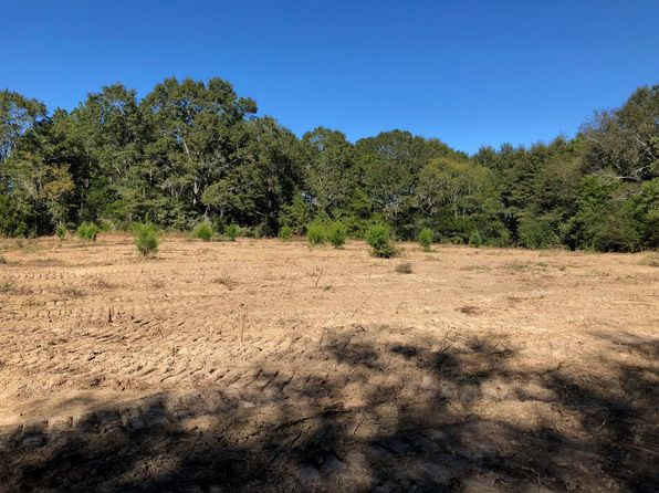 null bed null bath Vacant Land at 2 Ac Cr Kinston, AL, 36453 is for sale at 13k - 1 of 12
