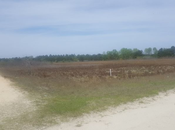 null bed null bath Vacant Land at 0 Paul Cromartie Ln Harrells, NC, 28444 is for sale at 6k - google static map