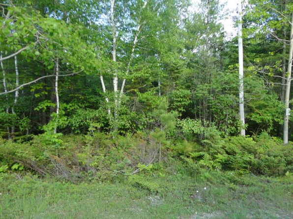 null bed null bath Vacant Land at  Pineview Presque Isle, MI, 49777 is for sale at 1k - 1 of 3