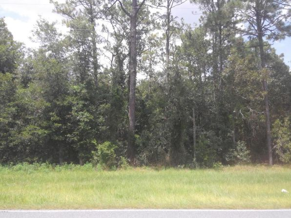 null bed null bath Vacant Land at 0 SE 80 St Morriston, FL, 32668 is for sale at 15k - 1 of 3