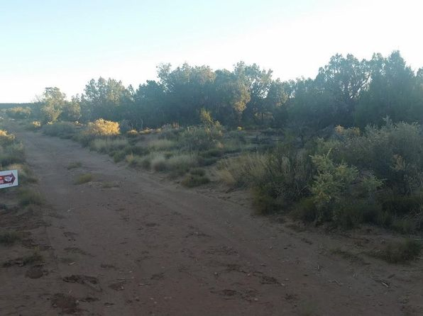 null bed null bath Vacant Land at 4130 Stirrup Rd Snowflake, AZ, 85937 is for sale at 22k - 1 of 5