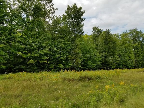 null bed null bath Vacant Land at M-32 070-111-000-140-00 Hillman, MI, 49746 is for sale at 7k - 1 of 5