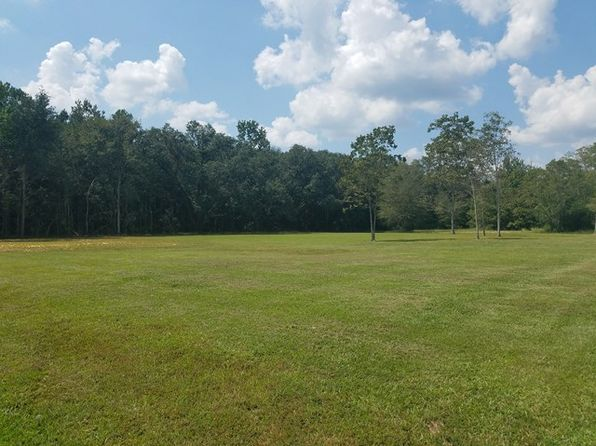null bed null bath Vacant Land at 00 Ridgetop Carriere, MS, 39426 is for sale at 32k - 1 of 9