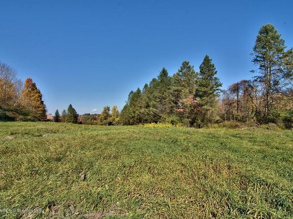 null bed null bath Vacant Land at  Lily Lake Rd Waverly Twp, PA, 18411 is for sale at 280k - 1 of 20