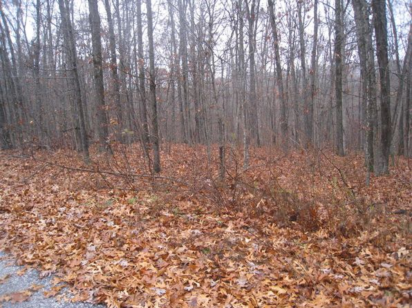 null bed null bath Vacant Land at  Lot 8 Buckskin Highlandville, MO, 65669 is for sale at 28k - 1 of 6