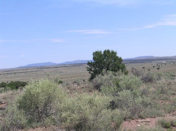 null bed null bath Vacant Land at 230 Ranch House Rd Ancho, NM, 88301 is for sale at 54k - 1 of 30