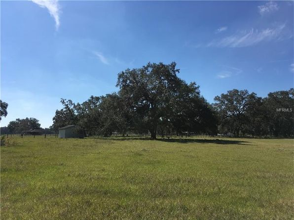 null bed null bath Vacant Land at T. B. D. County Road 766 Rd Webster, FL, 33597 is for sale at 90k - 1 of 4