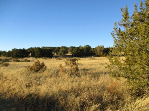 null bed null bath Vacant Land at L 8 Coalora Capitan, NM, 88316 is for sale at 24k - 1 of 13