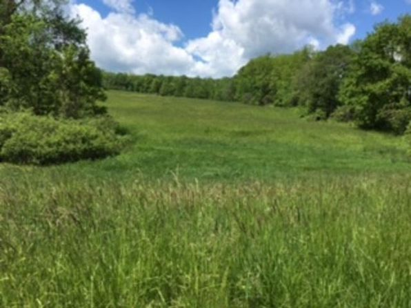 null bed null bath Vacant Land at A Sunset Dr Busti, NY, 14750 is for sale at 55k - 1 of 4