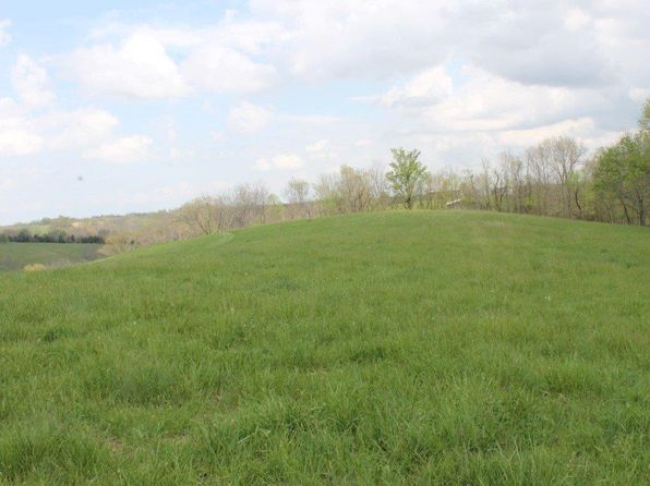 null bed null bath Vacant Land at 1 Mullikin Ln Mt Olivet, KY, 41064 is for sale at 35k - 1 of 6