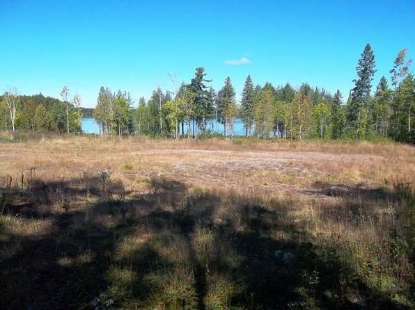 null bed null bath Vacant Land at ON Palmer Lake Rd Land O Lakes, WI, 54540 is for sale at 159k - 1 of 7