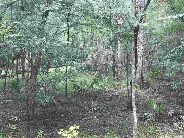 null bed null bath Vacant Land at  Tbd NE 60th St High Springs, FL, 32643 is for sale at 120k - google static map
