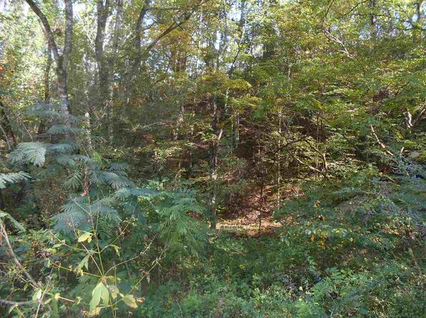 null bed null bath Vacant Land at  Lot 46 Velvet Dr Cosby, TN, 37722 is for sale at 13k - 1 of 4