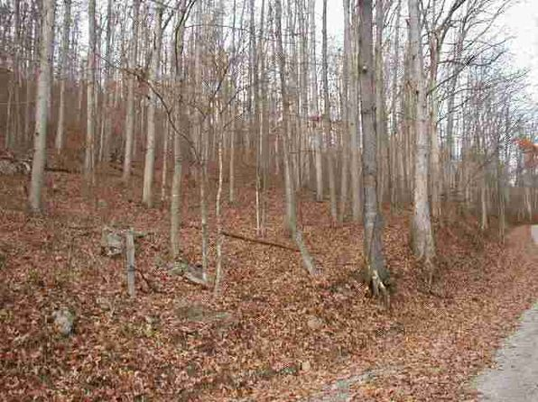 null bed null bath Vacant Land at  Belington Estates Ln Belington, WV, 26250 is for sale at 20k - 1 of 3