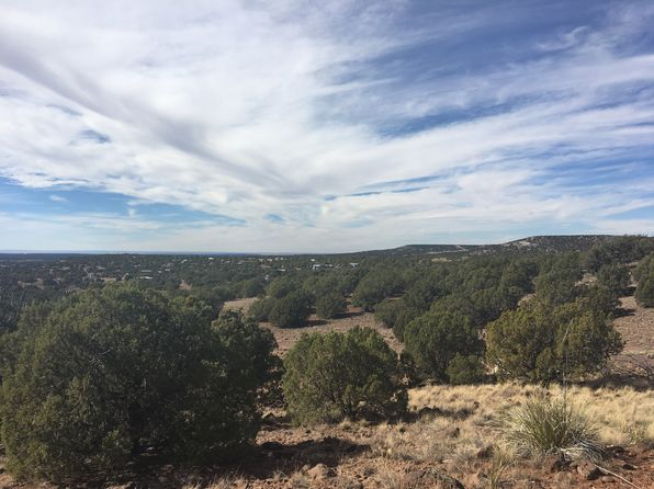 null bed null bath Vacant Land at  County Rd 8303 Concho, AZ, 85924 is for sale at 8k - 1 of 11