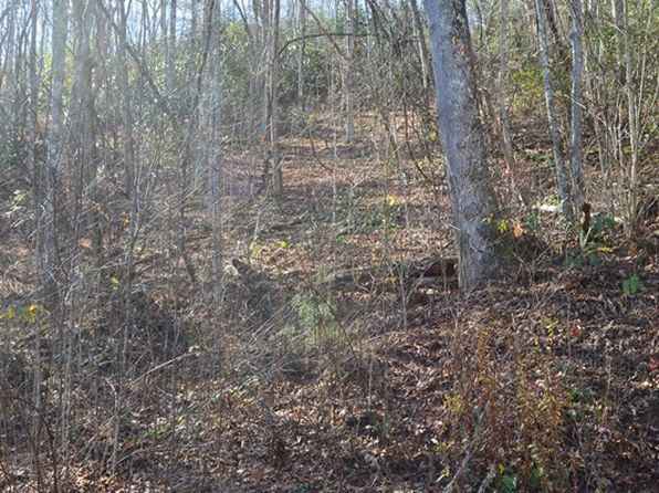null bed null bath Vacant Land at  Little Chiga Rd Topton, NC, 28901 is for sale at 115k - 1 of 21