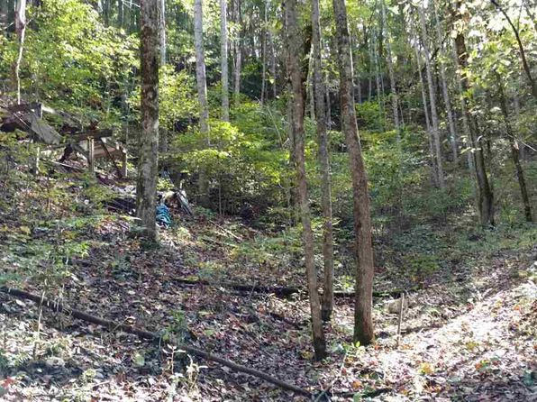 null bed null bath Vacant Land at  Shady Springs Way Parcel Just Cosby, TN, 37722 is for sale at 20k - 1 of 3