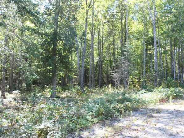 null bed null bath Vacant Land at C 1 Carter Farm Ln Surry, ME, 04684 is for sale at 49k - 1 of 5
