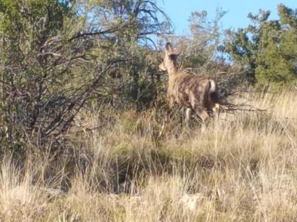 null bed null bath Vacant Land at  E Bullhorn Rd Dewey, AZ, 86327 is for sale at 76k - google static map