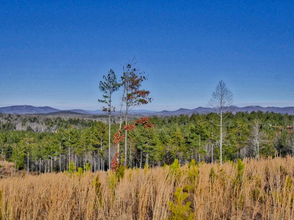null bed null bath Vacant Land at  Thirteen Hundred Blairsville, GA, 30512 is for sale at 80k - 1 of 30