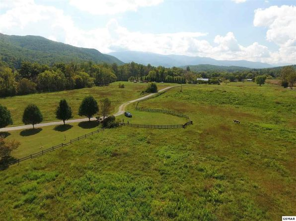 null bed null bath Vacant Land at  Creek Song Way Cosby, TN, 37722 is for sale at 179k - 1 of 36