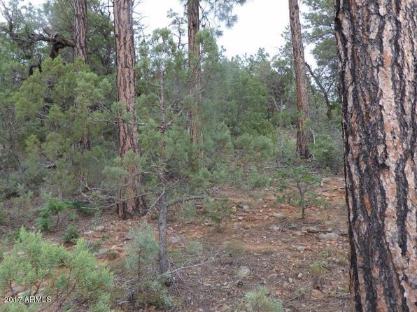 null bed null bath Vacant Land at 2125 S Pleasant View Dr Show Low, AZ, 85901 is for sale at 90k - 1 of 6